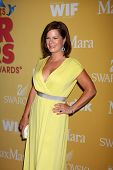 LOS ANGELES - JUN 12:  Marcia Gay Harden arrives at the City of Hope's Music And Entertainment Indus