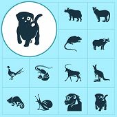 Zoo Icons Set With Antelope, Ox, Puppy And Other Joey Elements. Isolated Vector Illustration Zoo Ico poster