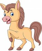 Vector Illustration Of Cute Baby Pony Cartoon Isolated On White Background poster
