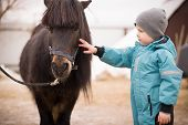 Cute Kid Boy In Turquoise Overalls Stroking An Icelandic Pony With A Funny Forelock. Child Thanks Th poster