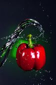 Water Splashed On A Pepper.