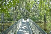 Plantation Bridge