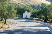 small church between olive trees on the road to Jale Bay, Albania