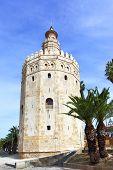 La torre del oro (Torre del Oro), Sevilla
