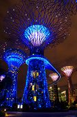 Garden By The Bay12