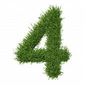 pic of arabic numerals  - Arabic numeral made of grass - JPG