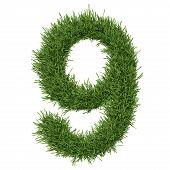 foto of arabic numerals  - Arabic numeral made of grass - JPG