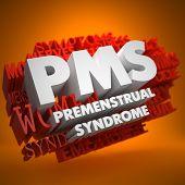 PMS Concept.