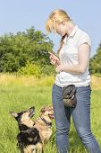 Dog Trainer Teaching Dogs 1