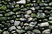Stone wall with moss and lichen