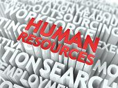 Human Resources. Wordcloud Concept.