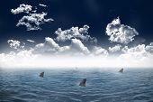 Digitally generated shark infested sea under dark sky