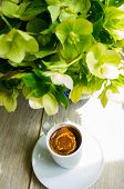 pic of helleborus  - helleborus flowers in the vase and cup of coffee on the old table - JPG