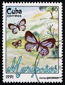 Postage Stamp Cuba 1991 Nickerbean Blue, Butterfly