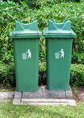 Twin Green Bin