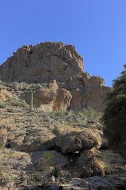 image of magma  - Cacti and other desert succulent plants near Magma ridge in Boyce Thompson Arboretum State Park near city of Superior AZ - JPG