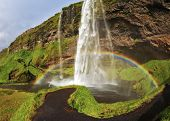 Seljalandsfoss waterfall in Iceland. Summer sunny day. Large rainbow decorates a drop of water. The picture was taken Fisheye lens