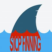 Shark Blood Finning