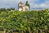 Church And Vineyard Of Francs And Tayac