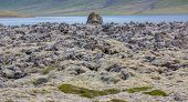 Detailed view of lava fields skyline in Iceland