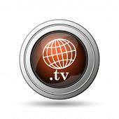 Globe and .tv Icon