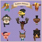 Fashion Hipster Animals set 5
