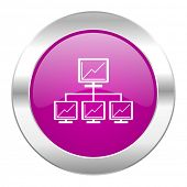 network violet circle chrome web icon isolated