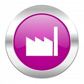 factory violet circle chrome web icon isolated