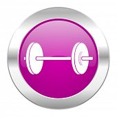 fitness violet circle chrome web icon isolated