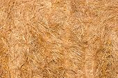 picture of naturel  - Naturel Haystacks close up texture  - JPG