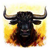 stock photo of bull head  - furious  bull head digital painting - JPG