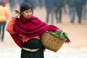 BHAKTAPUR, NEPAL, NOVEMBER 27, 2010: A senior woman is carrying her basket containing fresh vegetables and herbs from the local market in Bhaktapur, Nepal