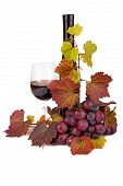 pic of grape  - Wine glass with bottle and grapes in front of white background - JPG