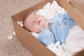 stock photo of baby delivery  - Newborn baby in open post box with filler on carpet - JPG