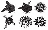 Set, black, flowers, vector, illustration, nature, plants
