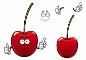 Fresh sweet cherry fruit cartoon character