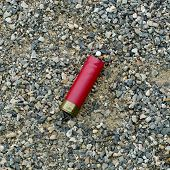 picture of shotgun  - Red shotgun shell that has been fired - JPG