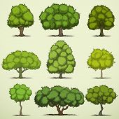 Set of cartoon deciduous trees
