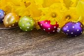 pic of daffodils  - spring yellow daffodils with easter eggs border on wooden background - JPG