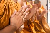 Hand of young Asian monk pay respect to the Buddha