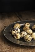 Moody Natural Lighting Vintage Retro Style Image Of Quaills Eggs