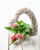 Tender Pink Tulips With Rustic Wooden Heart