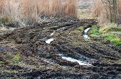 picture of ooze  - Muddy road among the reeds with pools are remnants of ice - JPG