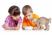 pic of child feeding  - happy children girl and boy feed cat kitten - JPG