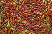 Hot Pepper Background