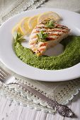 picture of mint-green  - Grilled chicken and mashed mint with green peas close - JPG