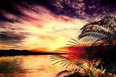 picture of vegetation  - 3D illustration tropical landscape at sunset - JPG