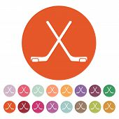 foto of hockey arena  - The hockey icon - JPG