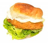 image of southern fried chicken  - Southern fried chicken sandwich with lettuce and mayonnaise isolated on a white background - JPG