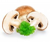 foto of champignons  - Brown champignons mushrooms close - JPG